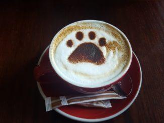 Kaffee-Kunst